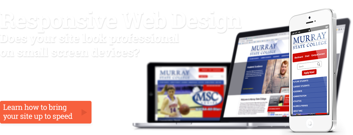 Responsive Web Design, Does your site look professional on small screen devices?